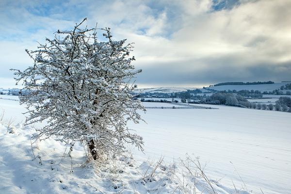 Knighton Hill snowfall