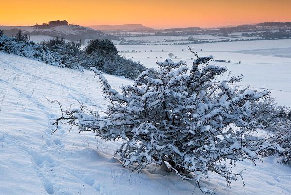 Winter Sundown Sutton Down