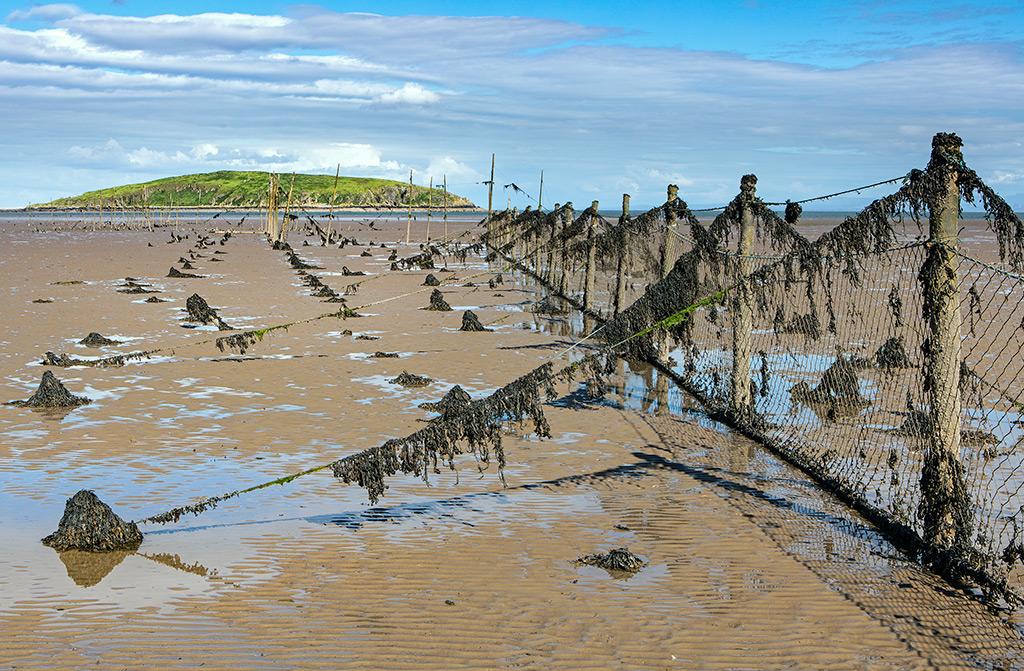 Fishing Nets at Balcary Bay