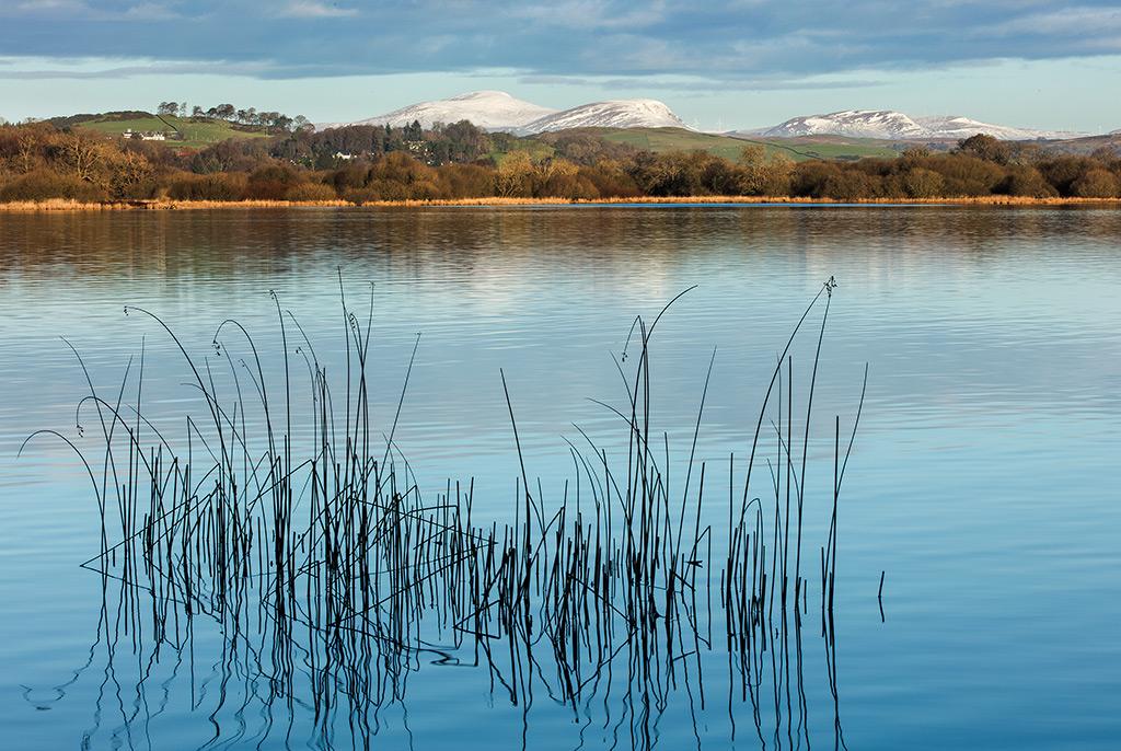 Early Morning Loch Ken