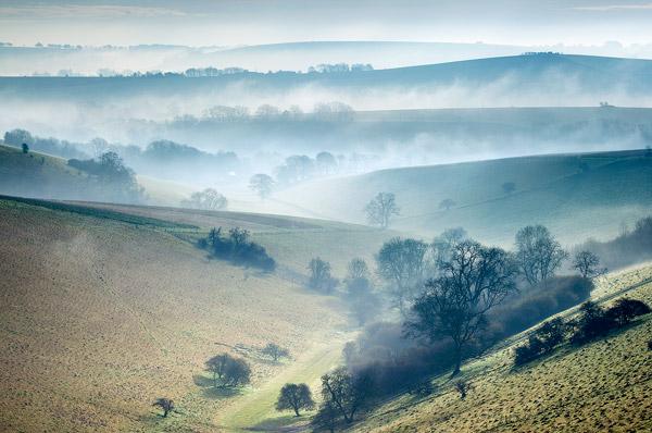 Chalke Valley Mist