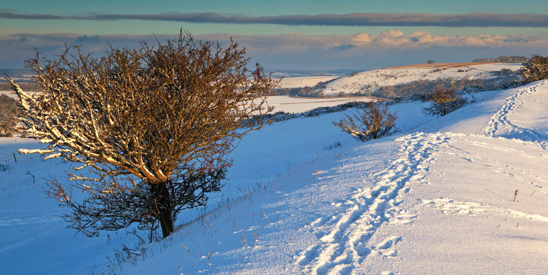 Winter Walk at Chiselbury Ring