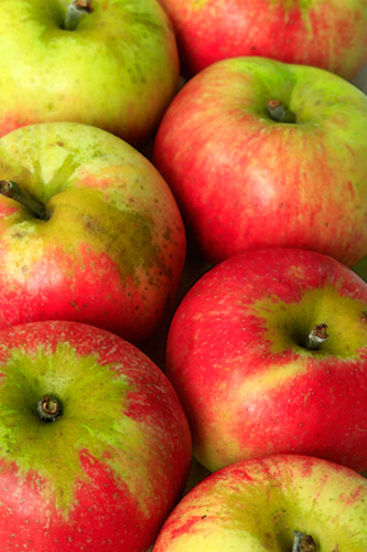 English Apples