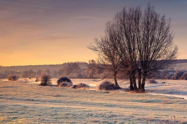 Frosty Dawn Odstock