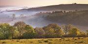 Autumn Morning on Winkelbury Hill