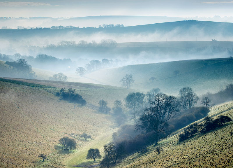 Mist in the Chalke Valley