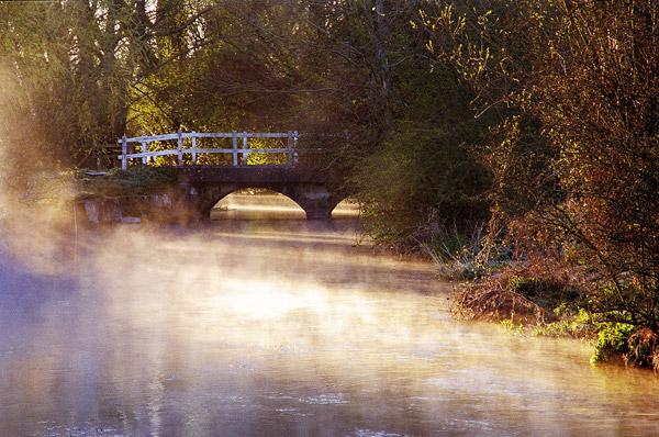 Misty Morning Longbridge