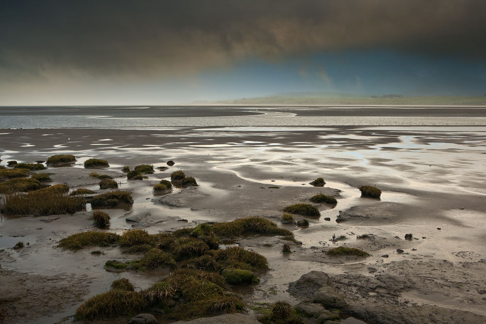 Nith Estuary Caerlaverock