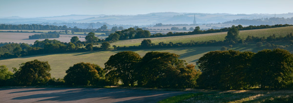 Salisbury Cathedral from Bishopstone