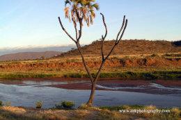 Ewaso Ngiro River Samburu