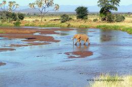 Ewaso Ngiro River