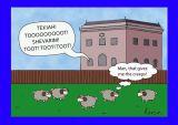 Rosh Hashannah - Sheep at shul