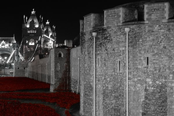 We will Remember 2