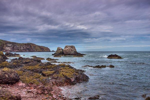 Seagull Rock 1