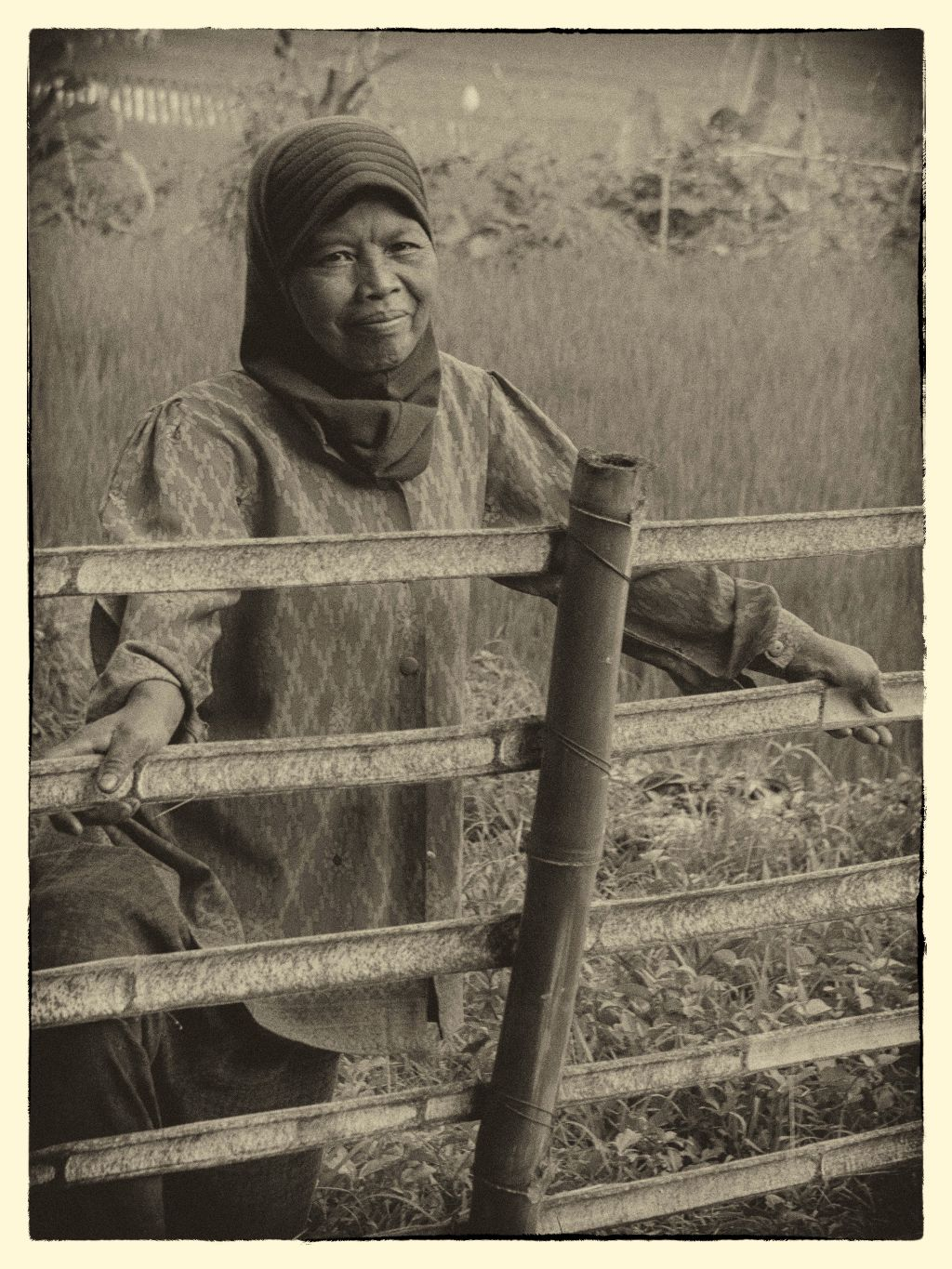 Rice Lady II