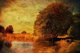 Autumn Holkham 4