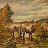 1. 'Vacche maremmane - Grosseto' 40x55cm