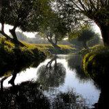 Over Beverley Brook