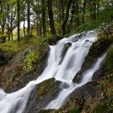 Waterfall, Tom Gill.