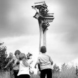 'Parliament of Birds' Sculpture, Wolverhampton.