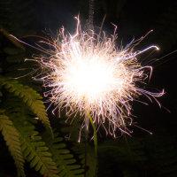 sparklers-1-3