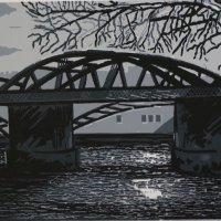 Barnes Bridge Moonlight