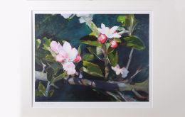 'Apple Blossom' Mounted Print