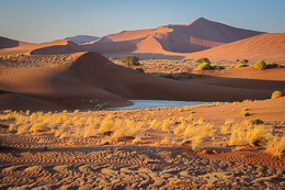 Vlei and Dunes
