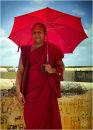 'Friendly monk'