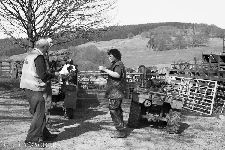 The postman calls, Bransdale, March 2014