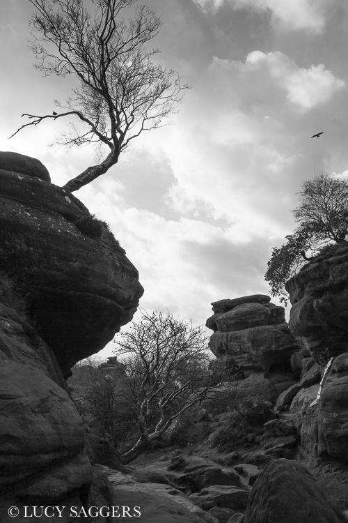 Brimham Rocks, Halloween 2013