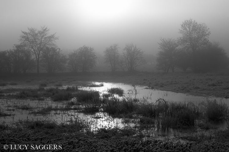 Misty sun over frozen floodwater, Byland Abbey, December 2012