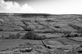 Burning heather, Bransdale, March 2014