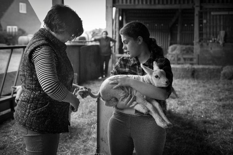 Louise, Amy and Joyce Wood docking lambs, 2017