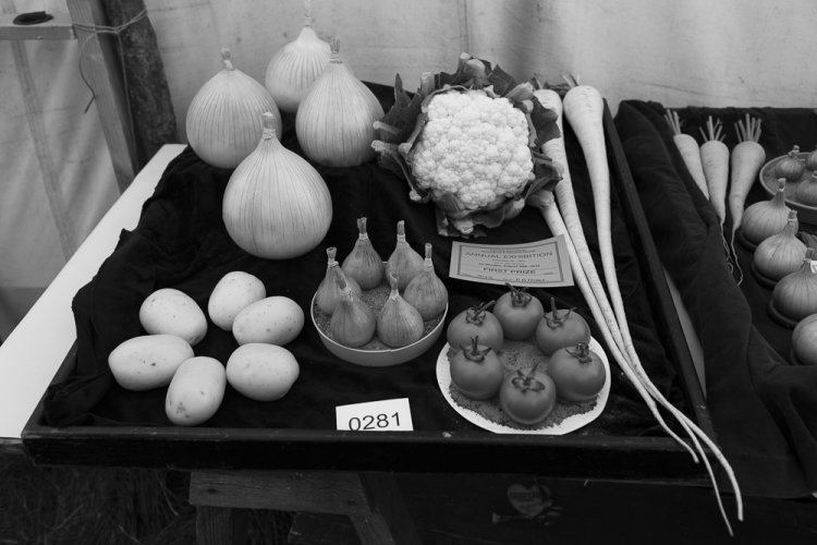 Winner, Tray of vegetables, Farndale Show, August 2016