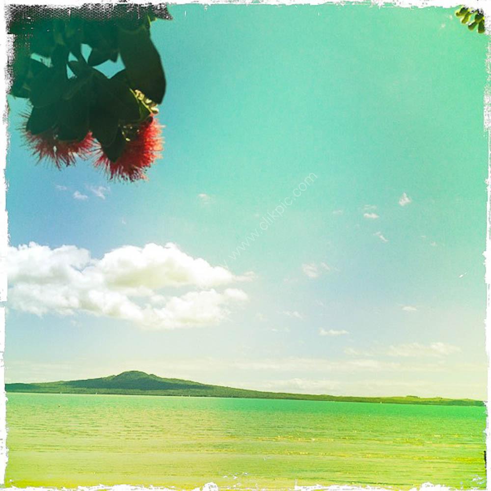 Rangitoto in Summer