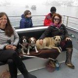 Ferry Passengers en route to Seldovia.