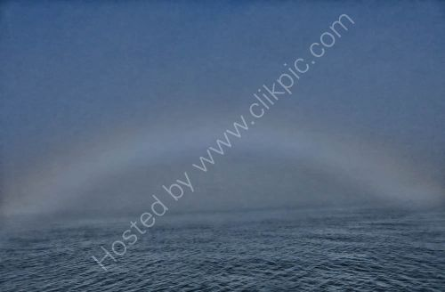 A relatively rare Fog Bow