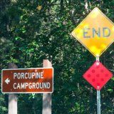 Porcupine Camping Ground, Hope, Alaska