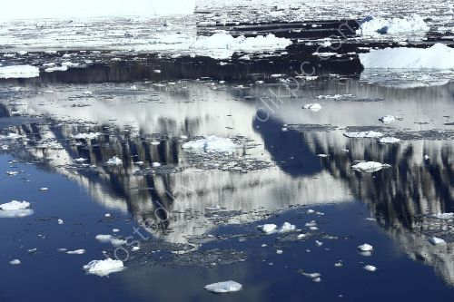 Reflections Greenland