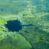 Okavango Delta airial