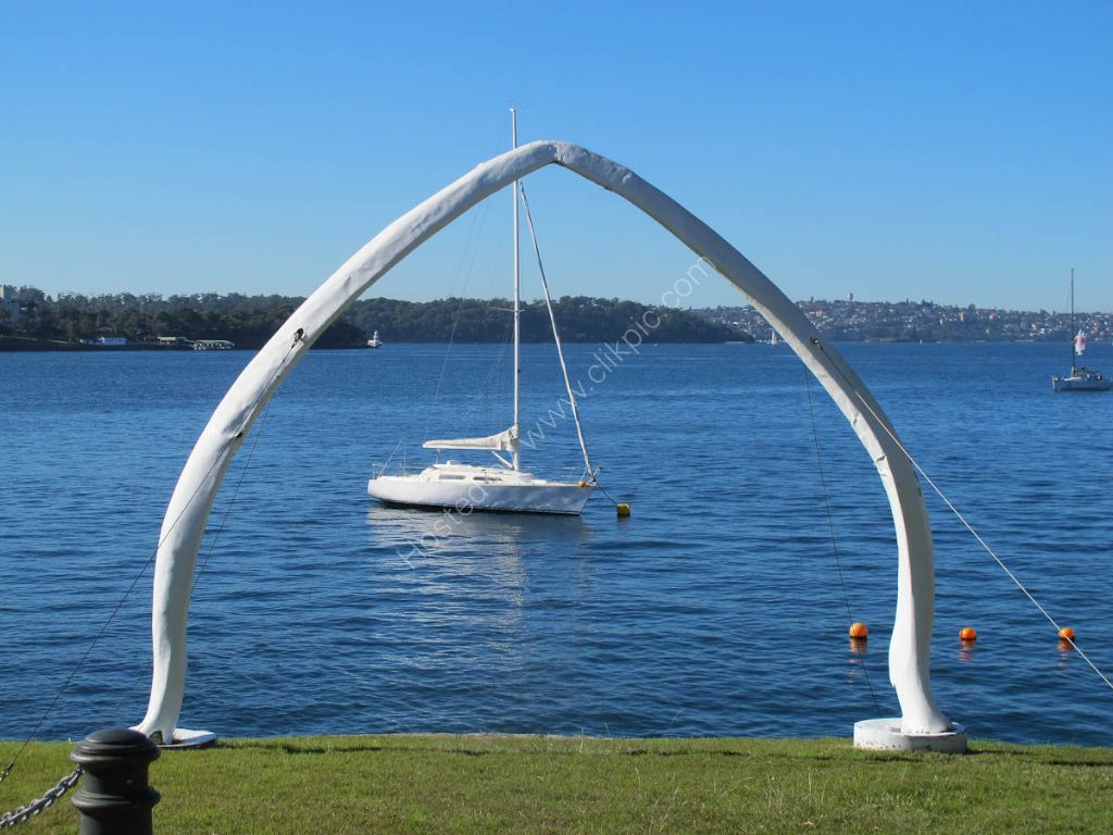 Royal  Sydney Yacht Club