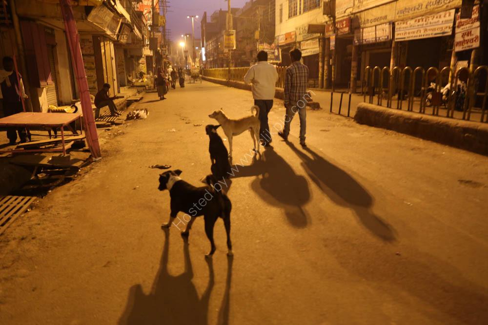 Varanasi street  early morning