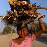 Gypsy girl carting wood