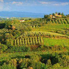 2009 Tuscany 09