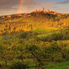 2010 Tuscany 10