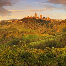 2011 Tuscany 11