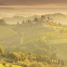 2015 Tuscany 15