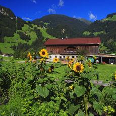 3004 Austria 04