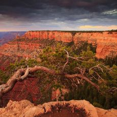 5016 Grand Canyon National Park 07